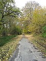 Slezská Harta (Leskovec nad Moravicí), cesta II.jpg