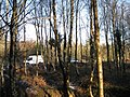 Small car park, Haldon Forest Park - geograph.org.uk - 1652135.jpg