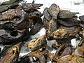 Smoked fish on the market.JPG