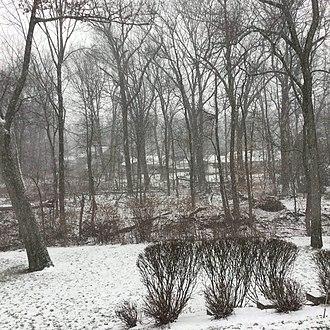 Winter storm - A mild snowstorm.