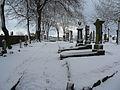 Snow in Nigg Kirk Cemetary (3255845505).jpg