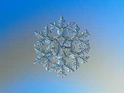 Snowflake macro photography 1