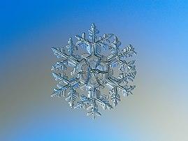 Macrophotographie d'un flocon de neige. (définition réelle 2212×1659)