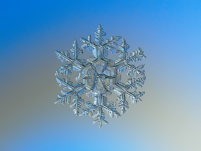 Macro photography of natural snowflake