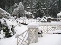 SnowstormGabriola.JPG