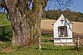 Sommerlinde bei Schaltberg 2014-03 02 NÖ-Naturdenkmal AM-053.jpg