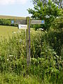 South Downs Way Signpost - geograph.org.uk - 25931.jpg