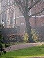 Springtime in Gray's Inn (6995005525).jpg