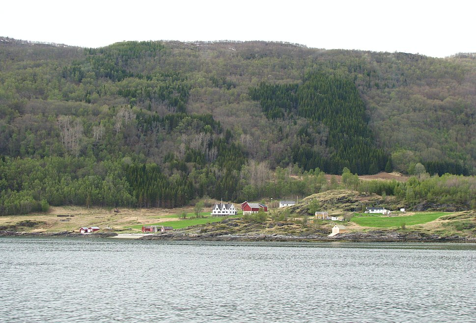 Spruce-Troms-Norway