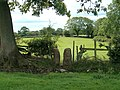 Squeeze stile - geograph.org.uk - 231468.jpg