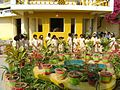 Sri Aurobindo Ashram Rewa during cultural programme.jpg