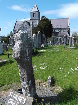 Cross and Church of St Ailbe