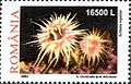 Stamps of Romania, 2002-07.jpg