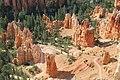 Standing Hoodoos at Bryce Canyon.jpg