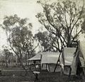 StateLibQld 1 235919 Campsite at the Governor's shooting camp, Dillalah, August 1907.jpg