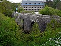 Staverton Mill and Bridge - geograph.org.uk - 1303050.jpg