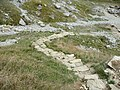 Steps descending into the quarry, Dancing Ledge - geograph.org.uk - 1626224.jpg