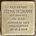 Stolperstein für Selma Neumann (Potsdam).jpg