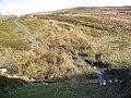 Stream Crossing below Moel y Gamelin - geograph.org.uk - 354261.jpg