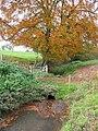 Stream near Brassington - geograph.org.uk - 272919.jpg