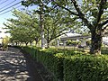 Street view on north side of Mikasagawa River near Torenjibashi Bridge.jpg