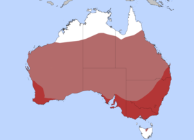 Distribution of the Stubble Quail  Dark Red = Common  Light Red = Nomadic
