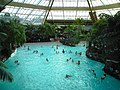 Sub-Tropical Swimming Paradise - geograph.org.uk - 1129712.jpg