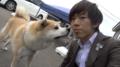 Suit Akita Dog.png