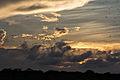 Sunset at the Tacarigua Lagoon - Atardecer en la Laguna de Tacarigua (10298916626).jpg
