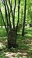 Třebotovský židovský hřbitov, náhrobky v řadě.jpg