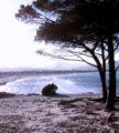 Tanaunella (Budoni) Spiaggia di Sant'Anna.JPG
