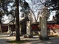 Temple of Mencius - three turtles - P1050875.JPG