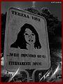 Teresa Vive - Anahí Cárdenas.jpg
