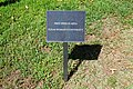 Texas Woman's University September 2015 63 (free speech area).jpg