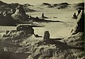 The California desert, majestic, challenging, and very vulnerable (1978) (19891592503).jpg