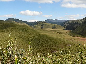 The Dzuko Valley lying on the border of Manipur and Nagaland has a temperate climate. The Dzukou Valley.JPG