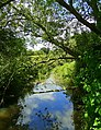The Emm Brook - view downstream - geograph.org.uk - 855754.jpg