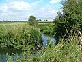 The River Ray at Freeths wood just outside Cricklade - geograph.org.uk - 354444.jpg