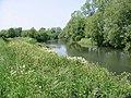 The River Stour and route of the Saxon Shore Way - geograph.org.uk - 459873.jpg