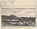 The Sheep Meadow MET DP822401.jpg