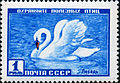 The Soviet Union 1959 CPA 2330 stamp (Mute Swan).jpg
