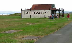 Redcar - The Stray and cafe