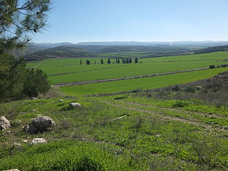 Valley of Elah - The Valley of Elah after the winter rains; Wadi es Sur