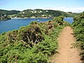 The coast path beside Salcombe Harbour-geograph-2460389-by-Philip-Halling.jpg