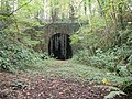 The entrance to the disused Lea railway Tunnel - geograph.org.uk - 244570.jpg