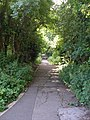 The footpath down to Yarm - geograph.org.uk - 484307.jpg