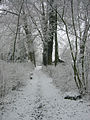 The footpath to my previous home on the Wickenburgh Estate near Utrecht Holland. On many winter days, the only footsteps in the snow were mine. Plus the ones from animals. (9443486862).jpg