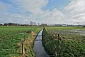 The river Bergbeek at the Weg naar Sint-Kruis.jpg