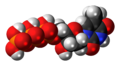 Thymidine triphosphate 3D spacefill.png