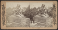 Tigress and Cubs, Central Park, N.Y, from Robert N. Dennis collection of stereoscopic views.png